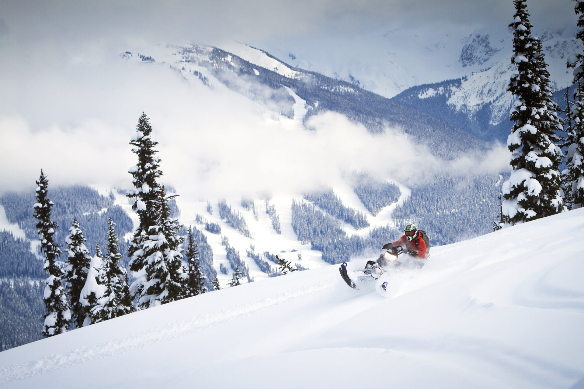 Snowmobiler riding fresh powder in the back country.