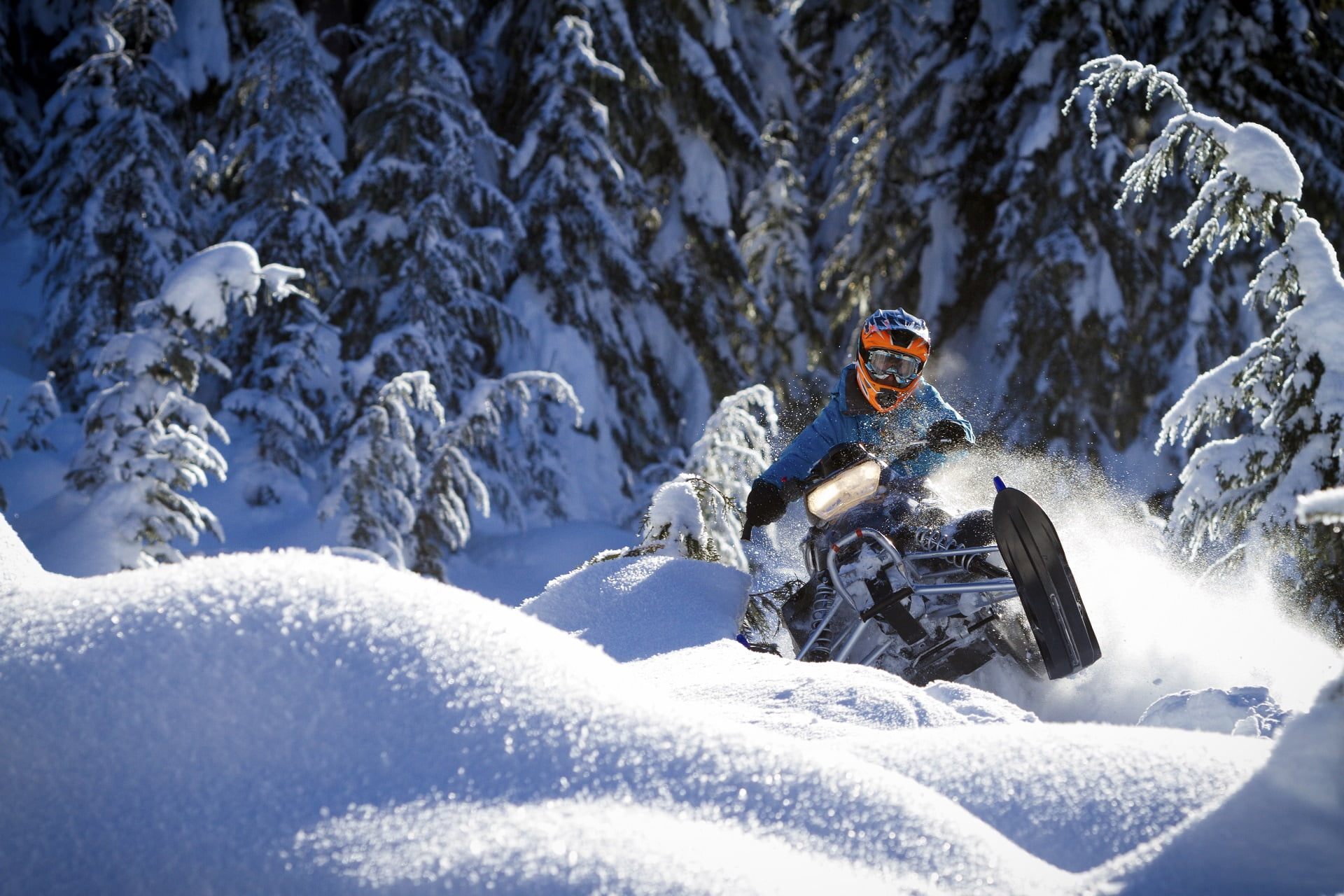 Snowmobiler riding fresh powder snow in back country.