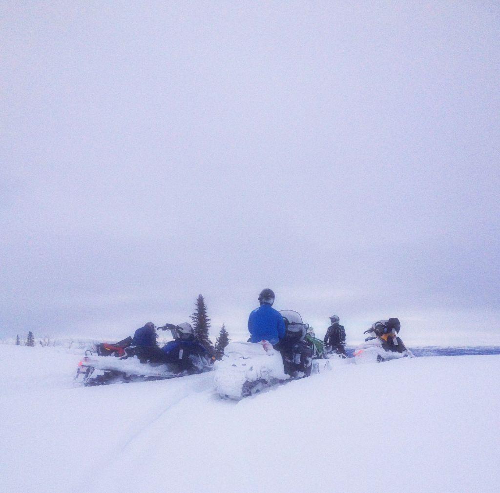 South Denali trail report–3/10/19